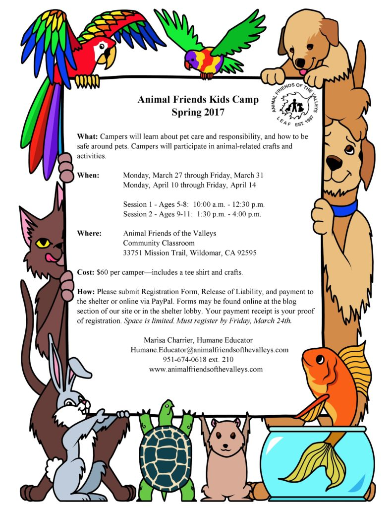 Animal Friends Spring 2017 Flyer