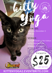 Kitty Yoga @ Animal Friends of the Valley  | Wildomar | California | United States