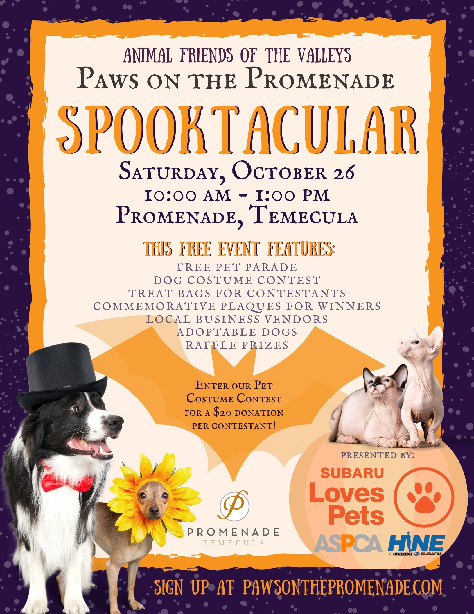 Paws on the Promenade 2019 Flyer